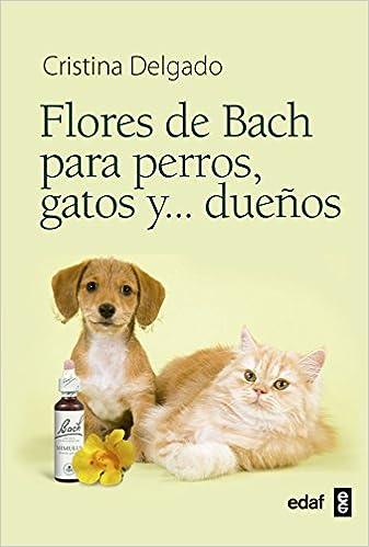 Flores De Bach Para Perros, Gatos Y ...Dueños (Plus Vitae): CRISTINA DELGADO: 9788441428188: Amazon.com: Books