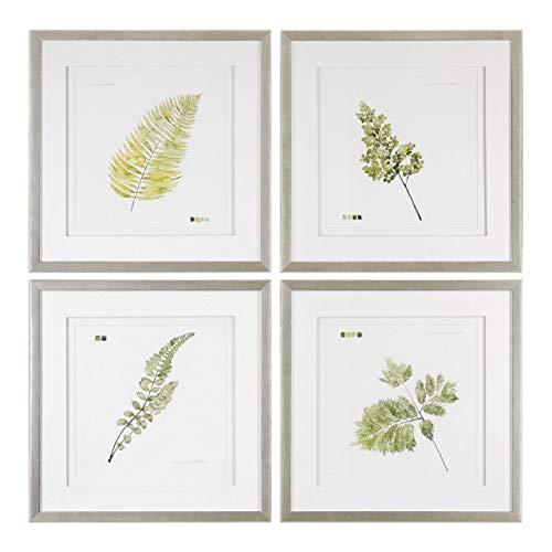 Uttermost 33666 Watercolor Leaf Study Framed Prints - Set of 4