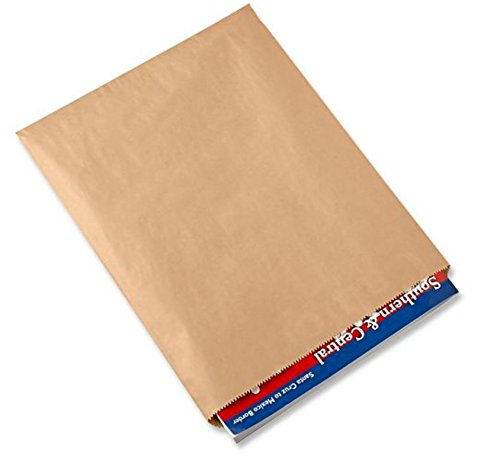 A1BakerySupplies® Premium Quality Kraft Paper Bags Flat Merchandise Bags Made in USA 100pack (12 In X 15 ()