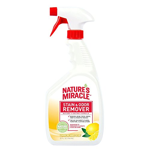 Natures Miracle Stain Remover Orchard