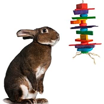 Pet Supplies : Pet Chew Toys : Medium Crazy Color Rabbit