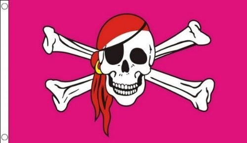 Pink Pirate Flag (PIRATE PRINCESS PINK SKULL & CROSSBONES PARTY and MUSIC FESTIVAL TENT FLAG, FOR GIRLS PARTIES, HEN NIGHT PARTY BANNER by BuzzBase)