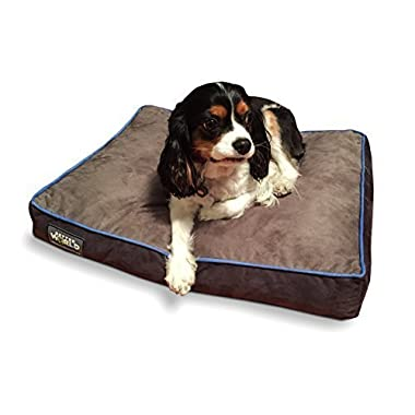 First-Quality 5  Thick Orthopedic Dog Bed | Pure Premium Memory Foam | Ideal for Aging Dogs | Waterproof | Helps Ease Pain of Arthritis & Hip Dysplasia | 180 GSM Removable Washable Cover