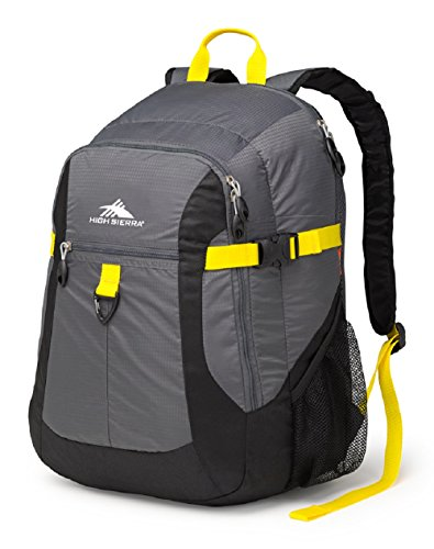 - High Sierra Sportour Laptop Backpack