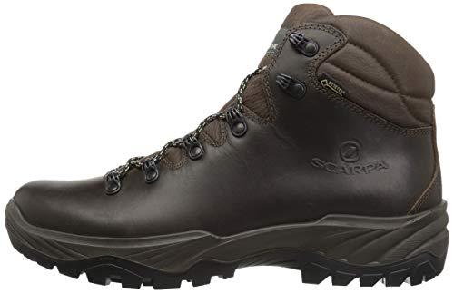 Walking Gtx Brown Women's Terra Scarpa Shoe 8xTz7