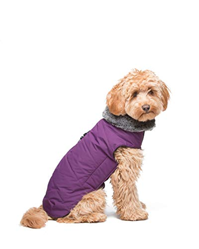Dog Gone Smart Tamarack Coat Jacket, Royal Purple, 14