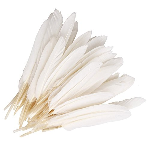 CrazyDeal white 100 beautiful goose feather 4-6 inches 10-15 cm, choose color Useful charming,White