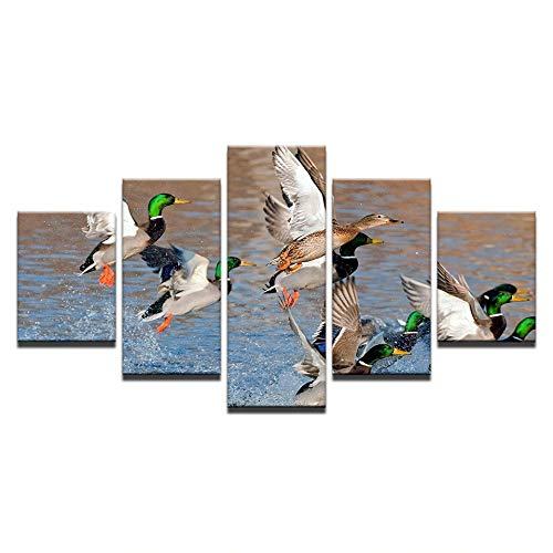 SoulSpaze Modular Canvas HD Prints Wall Art Pictures 5 Pieces Mallard Ducks Rising from Water Painting No Frame Size 4 ()
