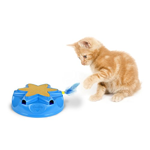 OurPets Catty Whack Interactive Cat Toy (Cat Toys for Stimulating Play with Real Mouse Sound, Rotating Feather for Hunting Instincts & Carpeted Scratching Area) 4