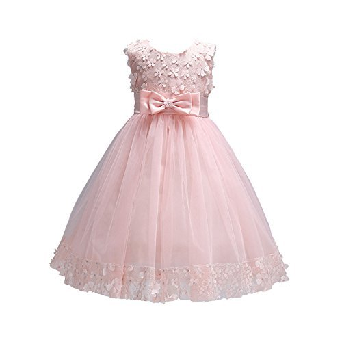 Weileenice 1-13T Girls Elegant Ball Gown Lace Dresses for Party A-line Girl Flower Dress ()