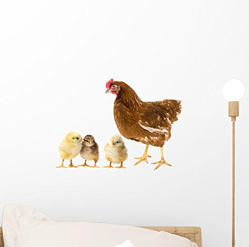 Wallmonkeys Chickens and Hen Wall Decal Peel and Stick Animal Graphics (12 in W x 9 in H) WM52355
