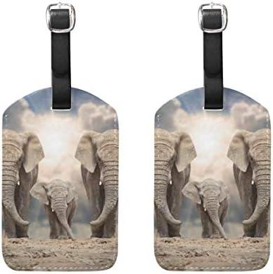 動物アフリカゾウ荷物タグ2個ポータブルアドレスネームタグホルダー識別子ラベルチェックカードトラベルバッグスーツケース