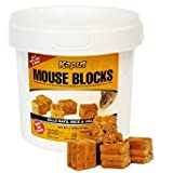 Kaput Mouse Blocks 22lb 71225