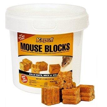 Kaput Mouse Blocks - 4lb. Bucket 71305 (Mouse Blocks)