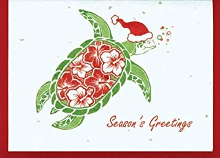 product image for Grow A Note® Holiday Hibiscus Turtle Card 4-Pack