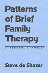 Patterns of Brief Family Therapy: An Ecosystemic Approach (Guilford Family Therapy)