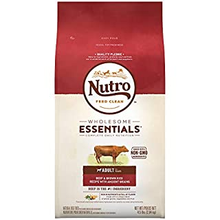 NUTRO WHOLESOME ESSENTIALS Adult Natural Dry Dog Food Beef & Brown Rice Recipe with Ancient Grains, 4.5 lb. Bag