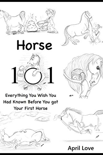 Horse 101: Everything You Wish you Had Known Before You Got Your First Horse