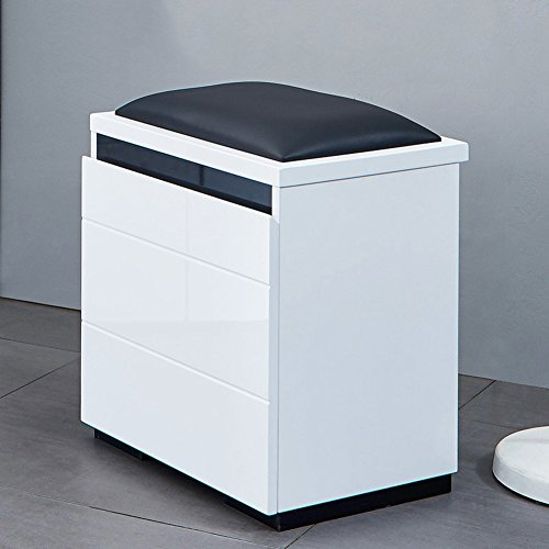 [Paint] Leather Art Shoe Stool,Multifunction Lacquer Locker Cabinet Sitting stool-4331.549.5cm