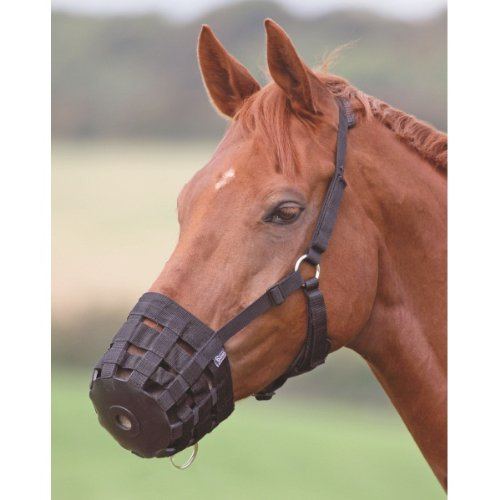 SHIRES EQUESTRIAN PADDED GRASS MUZZLE BLACK PONY NEW
