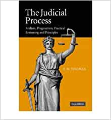 practical on judicial process The judicial process is too principle-prone and principle-bound-it has to be, there  is no other justification or explanation for the role it plays.