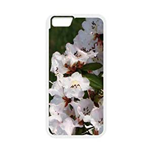 Rhododendron New iPhone 6 Plus 5.5 Inch Phone Silicone Case CSGO UK3339265