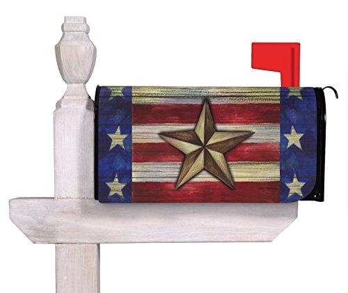 Evergreen Enterprises Evergreen Patriotic Barn Star Magne...