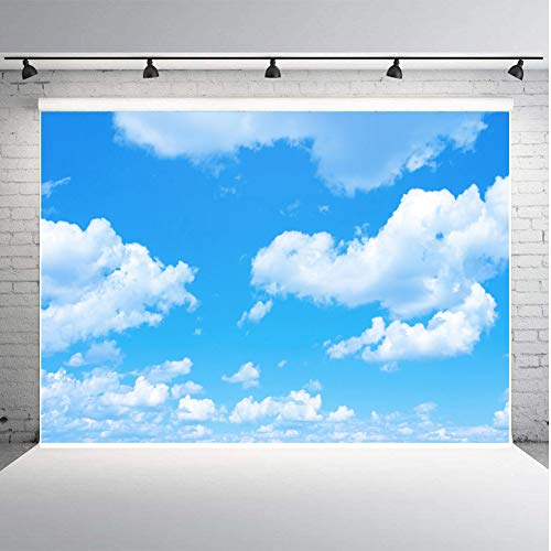Fanghui 7x5ft Vinyl Photography Backdrops Blue Sky White Cloud Sunny Sky Photo Background Baby Shower Birthday Party Studio Props Booth Banner ()