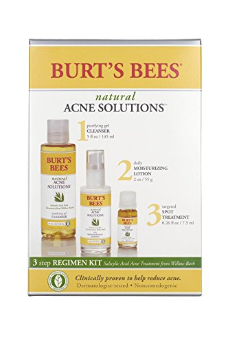 Burt's Bees Natural Acne Solutions Regimen Kit, 3 Step Acne Treatment - Gel Cleanser, Daily Moisturizer and Targeted Spot Treatment