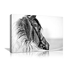 Black and White Horse Animal Canvas Painting Home Decor Wall Pictures Print for Living Room Wall Art Decoration Pictures…