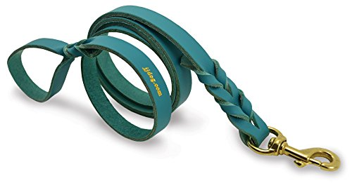 J&J Dog Supplies L612-TEA Braided Leather Dog Leash, Teal, 1/2' Wide by 6' Long
