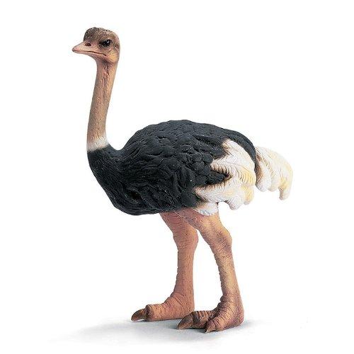 servicio de primera clase Schleich Ostrich Ostrich Ostrich 14325 by Schleich  ventas al por mayor