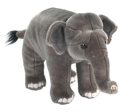 Webkinz Elephant (Webkinz Signature Asian Elephant)