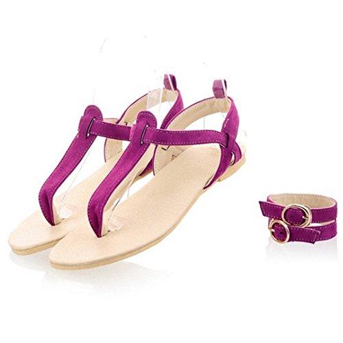 Flip Flop Buckle Strap Fashion 772 Sandals Flat Women Purple TAOFFEN with Beach T XqwZHxI