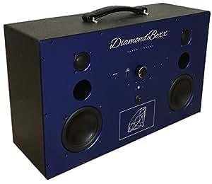 Amazon.com: DiamondBoxx Model L Wireless BlueTooth Speaker