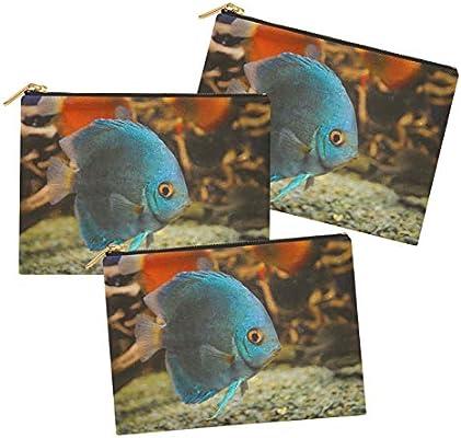 Timingila Blue Ocean Impreso multipropósito Cremallera componen el Bolso Neceser Organizador-Pack de 3 Piezas 6 x 8 Pulgadas: Amazon.es: Hogar