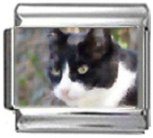 Stylysh Charms CAT Black White Photo Italian 9mm Link CA077