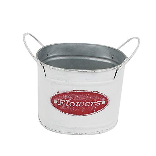MoGist Retro Nordic Fleshy Flowerpot Desktop Potted Mini Flower Pot Metal Flower Nursery Pot Planter Flower Pot Pen Pot (Red) ()