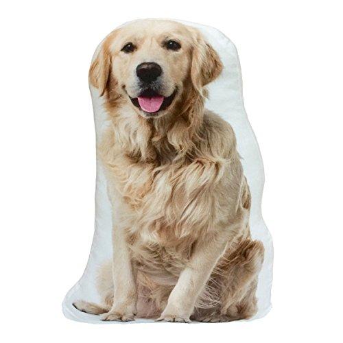 (KT Golden Retriever Dog Stuffed Shaped Throw Pillow Decor Gift)