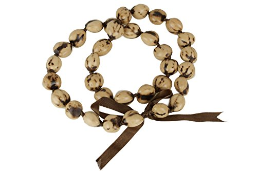 Barbra Collection Hawaiian Lei Necklace of Kukui Nuts - Lei Kukui
