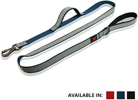Double Reflective Leashes Lockable Security
