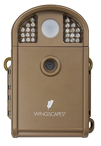 Moultrie Wingscapes Backyard WildlifeCam