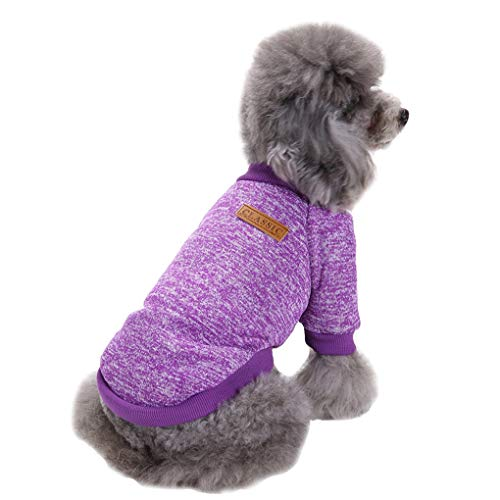 xsmall dog clothes - 1