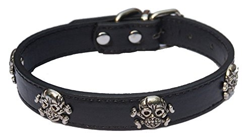 Lanyar Halloween Holiday Dog Collar for Puppy Small Dogs 5/8-Inch Adjustable 8-10