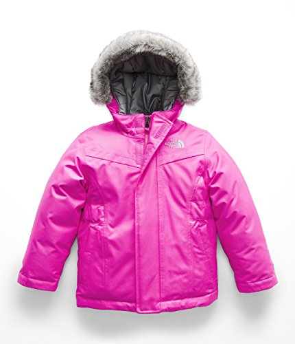The North Face Toddler Girl's Greenland Down Parka - Azalea Pink - 3T