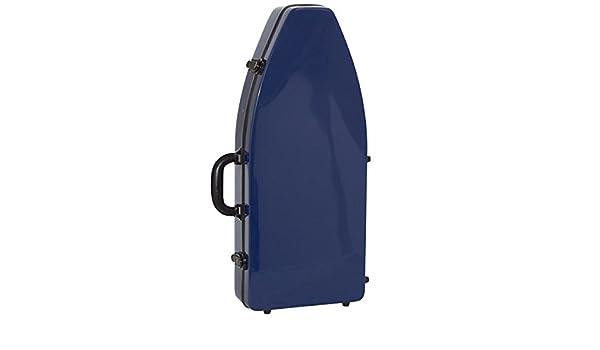 Amazon.com: ESTUCHE FIBER GLASS FAGOT FNA/01 (66x28x10cm.): Musical Instruments