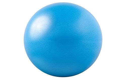 Price comparison product image GoFit 20cm Core Ab Ball with Brook Benten Training DVD and Inflation Tool (Blue)