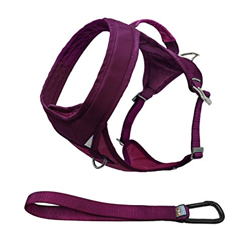Kurgo Go Tech Adventure Harness Raspberry
