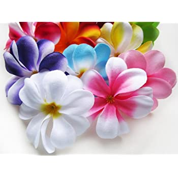 Amazon foam artificial plumeria rubra flower heads frangipani 100 assorted hawaiian plumeria frangipani silk flower heads 3 artificial flowers head fabric floral supplies wholesale lot for wedding flowers mightylinksfo