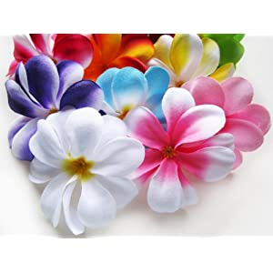 "(100) Assorted Hawaiian Plumeria Frangipani Silk Flower Heads - 3"" - Artificial Flowers Head Fabric Floral Supplies Wholesale Lot for Wedding Flowers Accessories Make Bridal Hair Clips Headbands Dress 1"